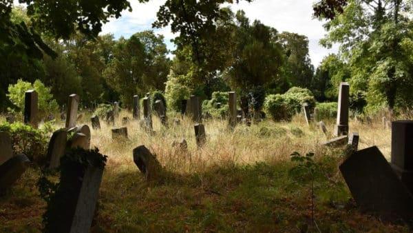 cmentarz, nagrobki, trawa, śmierć, rpg, pyrkon, samotność